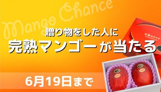 贈ったあなたにも食べて欲しい。完熟マンゴープレゼント企画!!