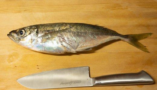 めいつ獲れのブランド魚「美々鯵」を捌いていくっ!!