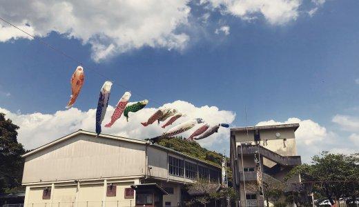 廃校のグラウンドを有効活用!地域を元気にする鯉のぼり