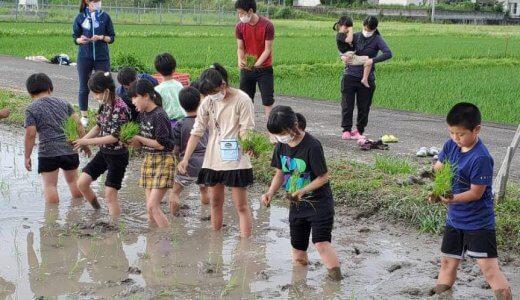 小学生がどろんこで学ぶ。「飫・結・肥(おむすび)プロジェクト」がスタート!